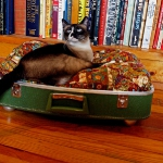 recycled-suitcase-ideas-pets-bed7.jpg