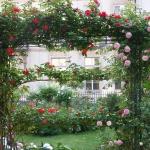 roses-in-garden-archway1.jpg