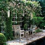 roses-in-garden-relax-nooks1.jpg