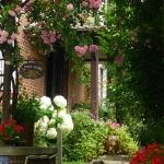 roses-in-garden-inspiration1-1.jpg