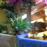 santa-cruz-landscape-designer3-4.jpg