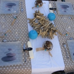 sea-inspire-table-set4-2.jpg