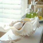 seashells-decor-ideas-combo7.jpg
