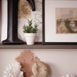 seashells-decor-ideas-easy3.jpg