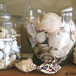 seashells-decor-ideas-easy9.jpg