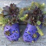 shoes-container-garden1-5.jpg