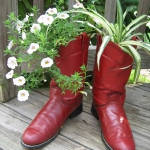 shoes-container-garden2-2.jpg