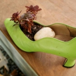 shoes-container-garden3-5.jpg