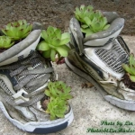 shoes-container-garden4-6.jpg