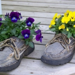 shoes-container-garden5-1.jpg