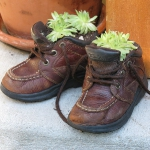 shoes-container-garden5-12.jpg