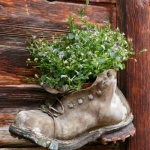 shoes-container-garden5-14.jpg