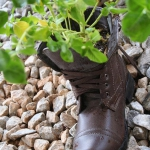 shoes-container-garden5-5.jpg