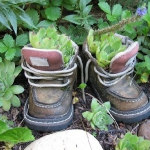 shoes-container-garden5-9.jpg