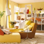 smart-divider-furniture-middle4.jpg