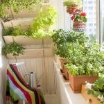 smart-russian-balcony-contest-by-ikea-plants2.jpg