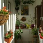 smart-russian-balcony-contest-by-ikea-plants7.jpg