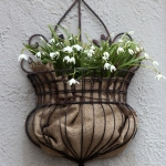 snowdrops-spring-decor-ideas4-3
