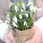 snowdrops-spring-decor-ideas4-4