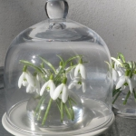 snowdrops-spring-decor-ideas6-2