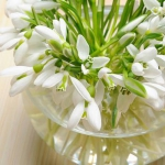 snowdrops-spring-decor-ideas8-1