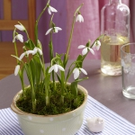 snowdrops-spring-decor-ideas9-1