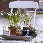 snowdrops-spring-decor-ideas9-2