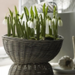 snowdrops-spring-decor-ideas9-4