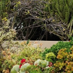 south-african-home-and-garden2-7.jpg