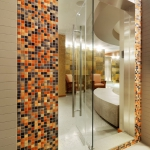 splash-of-exotic-colors-for-bathroom-orange5-3