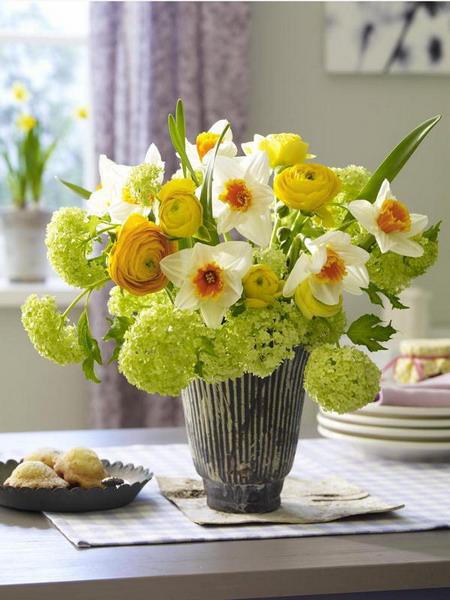 найти комнатный цветок по фото: