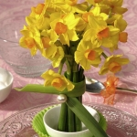 spring-flowers-new-ideas-narcissus5.jpg