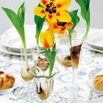 spring-flowers-new-ideas-tulip2-18.jpg