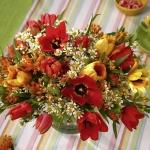 spring-flowers-new-ideas-tulip3-2.jpg