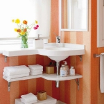 storage-in-small-bathroom-new-ideas6-1.jpg