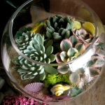 succulent-garden-in-home-and-outdoor1-7.jpg