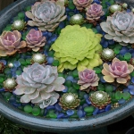 succulent-garden-in-home-and-outdoor3-1.jpg