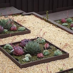 succulent-garden-in-home-and-outdoor5-4.jpg