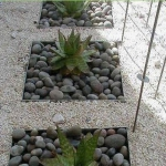 succulent-garden-in-home-and-outdoor5-6.jpg