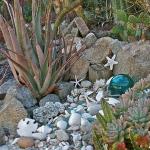 succulent-garden-tour2.jpg
