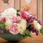 summer-flowers-classic1.jpg