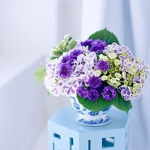 summer-flowers-classic4.jpg