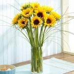 summer-flowers-variety1.jpg