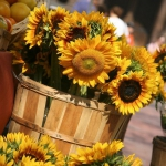 sunflowers-centerpiece-decorating-ideas-vase3-1