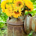 sunflowers-centerpiece-decorating-ideas-vase4-6