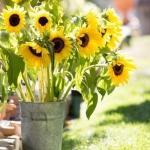 sunflowers-centerpiece-decorating-ideas-vase4-8