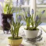 tea-cup-as-floral-vases17.jpg