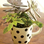 tea-cup-as-floral-vases18.jpg
