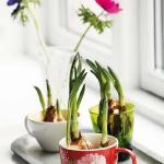 tea-cup-as-floral-vases19.jpg
