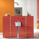 tiles-design-ideas-around-washbasin-accent2-5.jpg